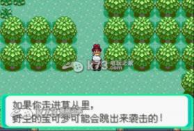 口袋妖怪绿宝石 中文典藏版 截图