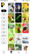 手机壁纸 v1.1.0 app下载