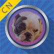 ar变脸魔镜最新版下载v1.0