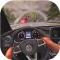 Pov汽车驾驶模拟最新版下载v2.4