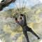 美国突击队战场幸存者下载v1.0.2