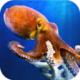 八爪鱼模拟器下载v1.0